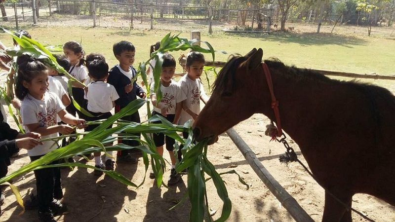 5 Acres of Kindness in Ahmedabad
